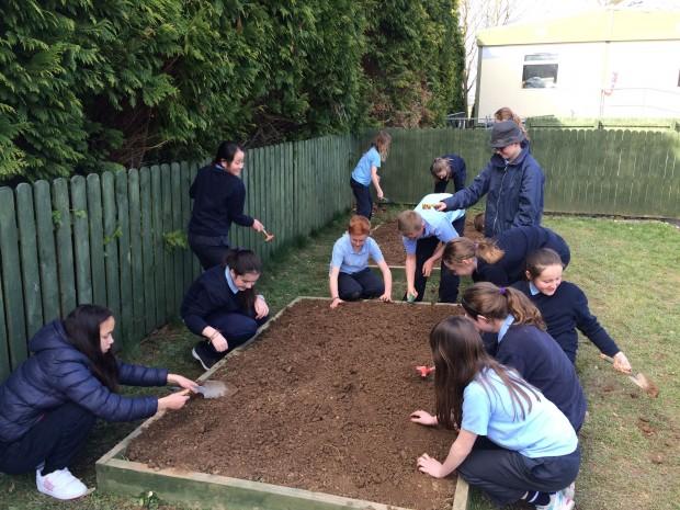 Gardening11