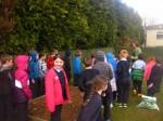 schoolgarden (4)